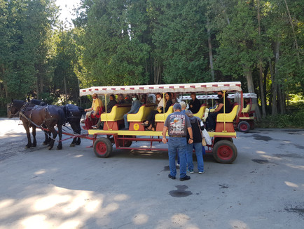 Every Carriage Driver Wants You to Know This Before Visiting Mackinac Island
