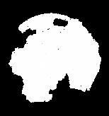 Logo Globo Visotronica