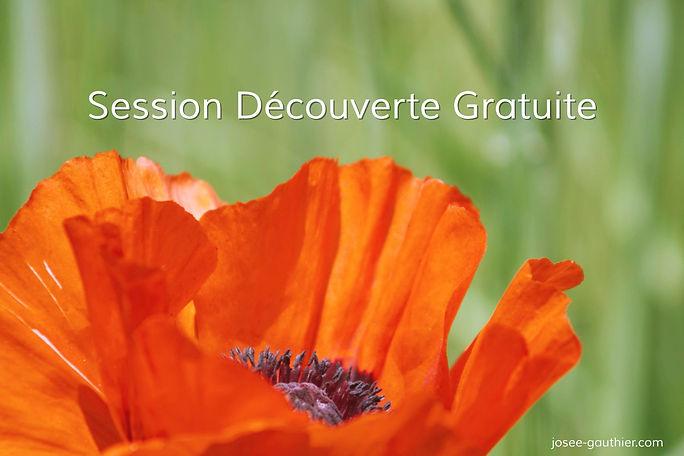 Session_découverte_gratuite_josee-gaut