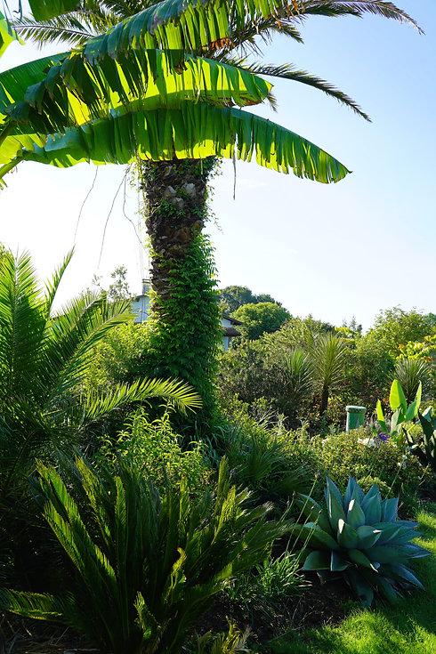 jardin-des-barthes-nathalie-payens-orent