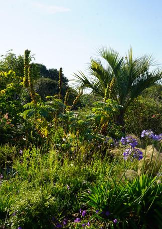 Jardin-des-barthes-oriental-min.JPG