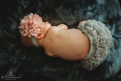 babygirl_ohTannenbaumPhotography.jpg