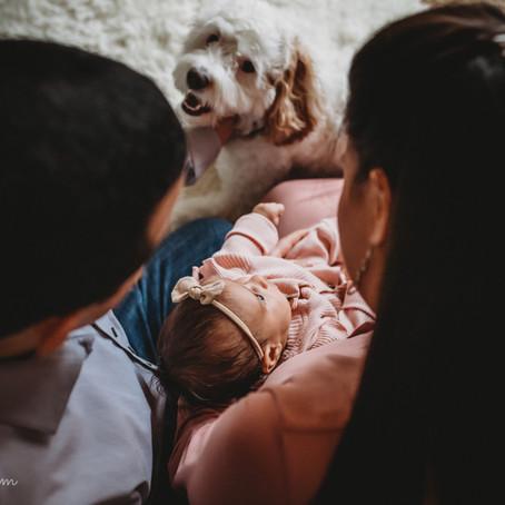 Not-so-Newborn Photo Session
