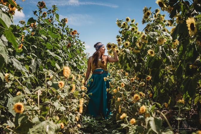 SunflowerFields_Portraits_OhTannenbaumPhotos.jpg