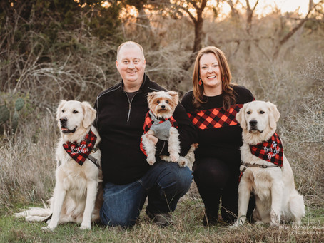 A Christmas Surprise - this Family is growing
