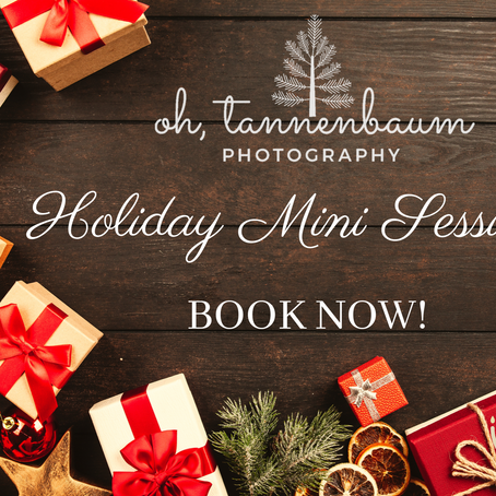 Book Your Holiday Mini Session