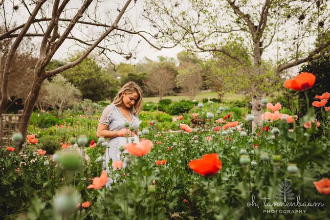 SpringMaternity_oh Tannenbaum Photograph