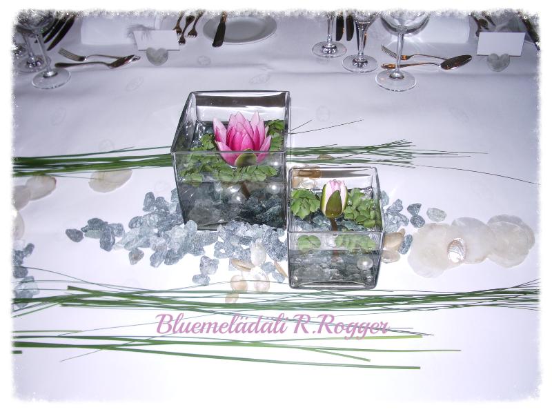 Gläserfüllung mit Seerosen und Wasserlinsen