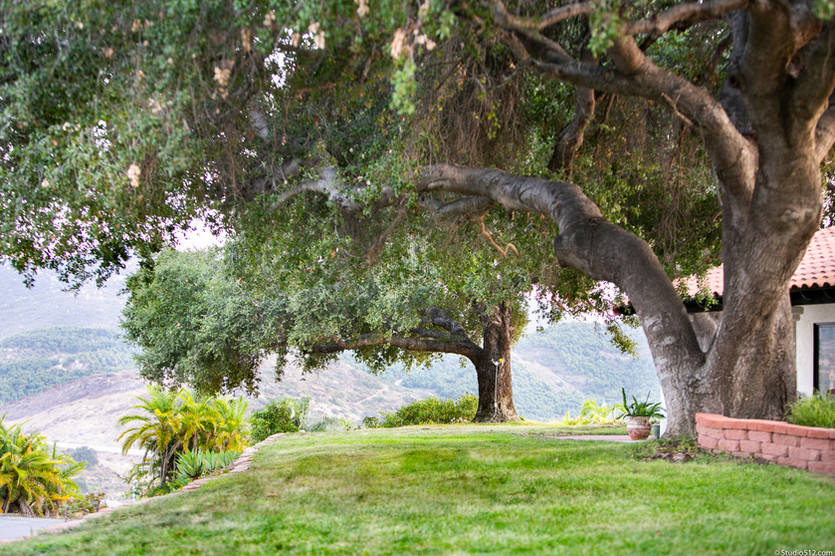8744-El-Camino-de-Pinos_C_058.jpg
