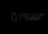 LS Logo 2.png