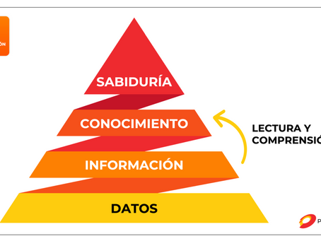 Objetivos de aprendizaje: La comprensión 360