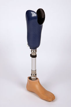 Basic Below Knee.jpg