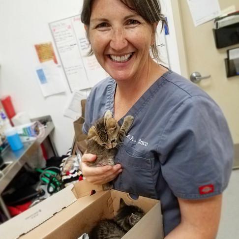 Meet Dr. Amanda Bruce
