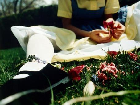 Collection Chlorys ou la naissances du géant printemps