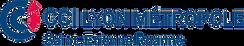 logo-CCI-lyon-metropole.png
