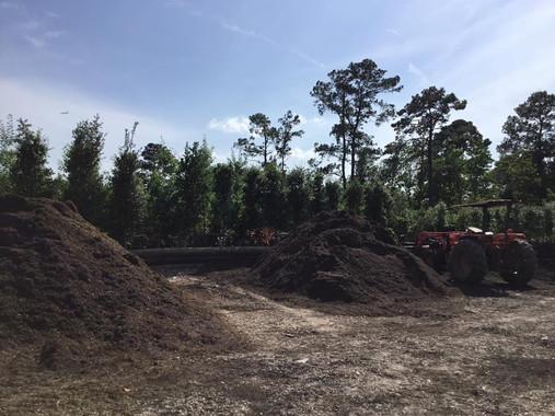 Mulch, planters soil.jpg