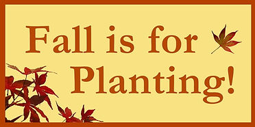 fall+is+for+planting+banner_600.jpg