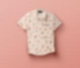 01-Dress-Shirt-Mockup-Front.png