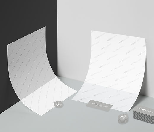 Paper-Brand-Mockup-Template-Recovered.jp