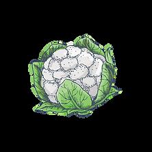 vegetales-02.png
