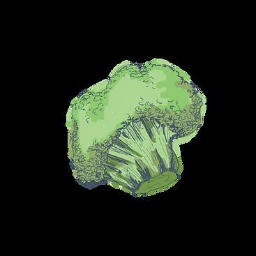 vegetales-05.png