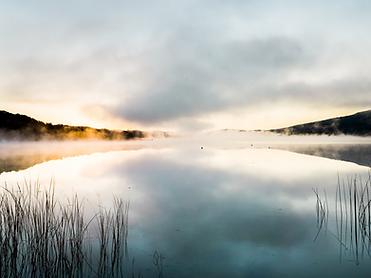 fog lake.png