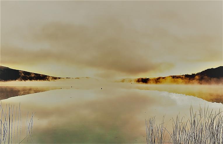 fog lake yellow.png