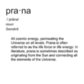 Prana Beauty misc.png