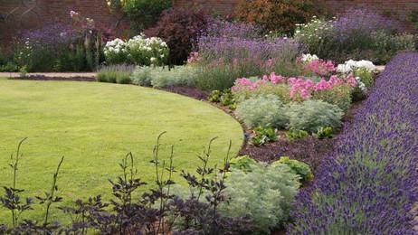 A country garden : :