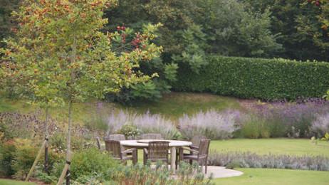 A garden in Autumn : :