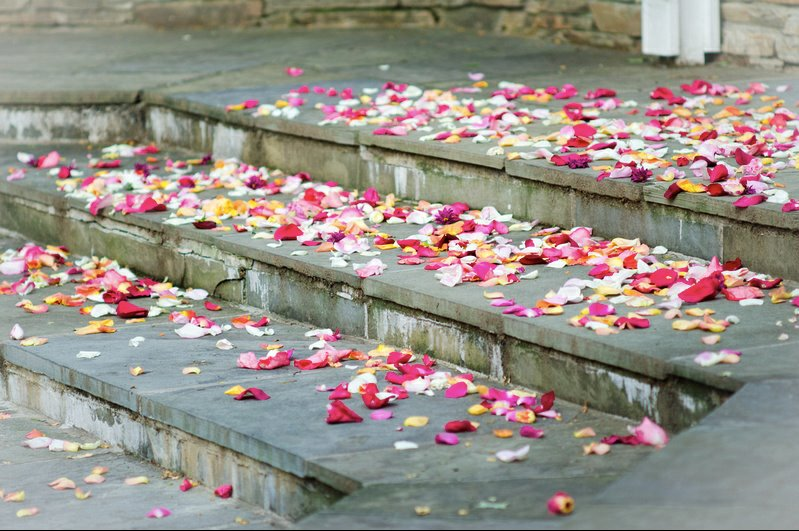 Petals in the Courtyard