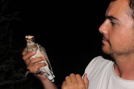 Dr Ben Smit, hot birds