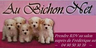 cropped-logo-au-bichon-net-13430-eyguier