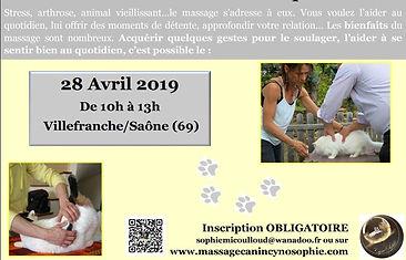 atelier chat avril 2019.jpg