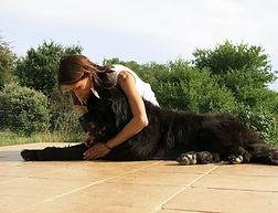massage canin fado.jpg