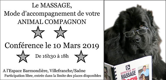 affiche10mars2019conf copy.jpg