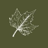 Logo et Picto Site internet Domaine de C