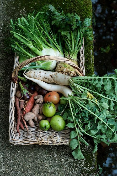 Légumes de la Boutique des Jardins de Courances