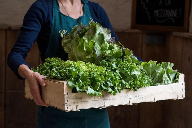 Cagette de salade à la Boutique des Jardins de Courances