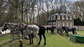 17 juillet et 13 août : Ateliers d'initiation au Polo