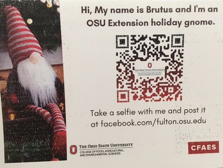 Selfies with Brutus the Gnome!