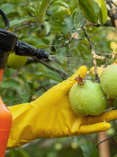 PEPE VOTA CONTRA PROJETO QUE AMPLIA O USO DE AGROTÓXICOS