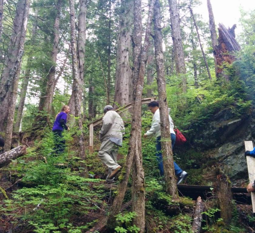 Alaska rainforest hike