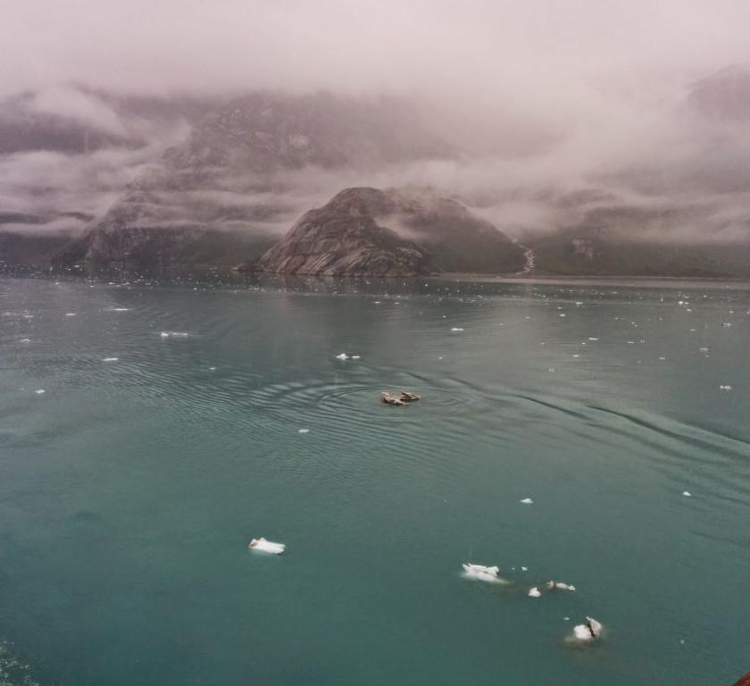 Tiny icebergs after earthquake overnight