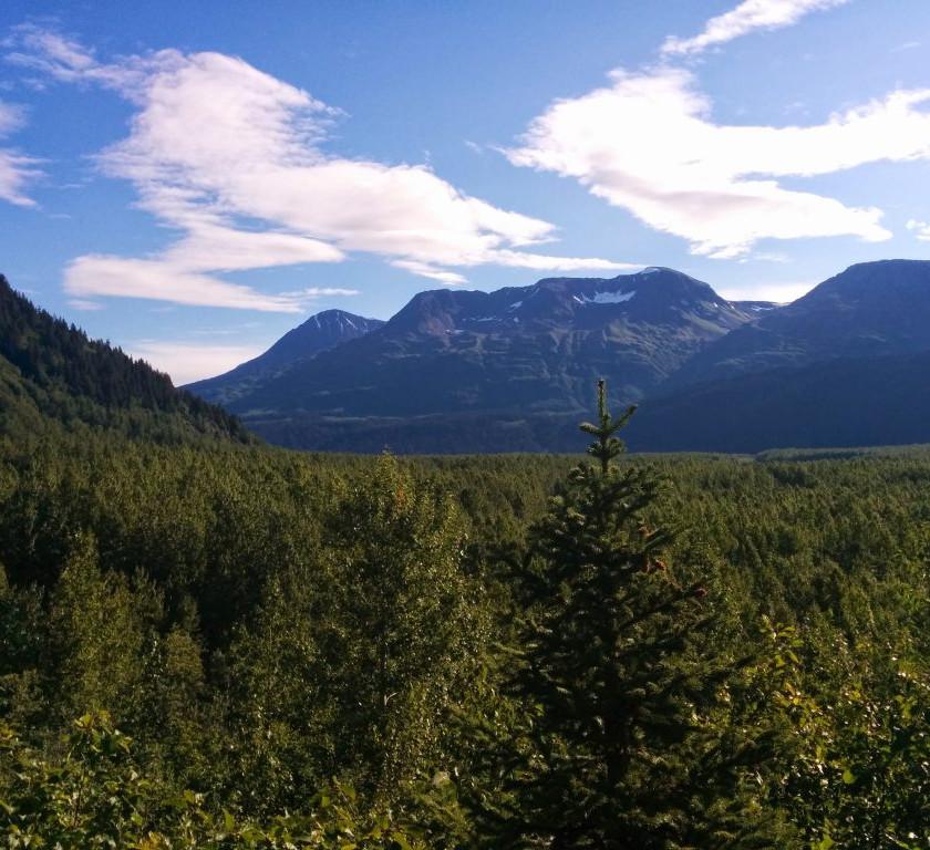 Views from the Kenai Peninsula