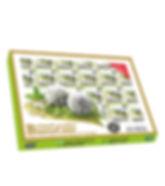 Banarasi Mint - 1x30 Box.jpg