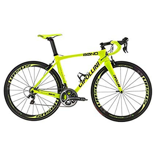 Cipollini Bond Fluro Yellow