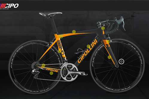 My Cipollini BOND