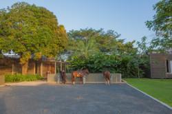 Panama horse saddling area