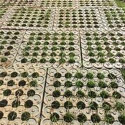 Mud control grid_4.jpeg